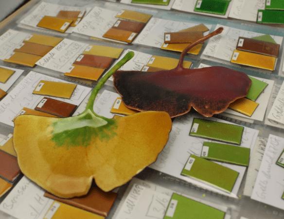 échantillage de couleur d'émaux pour des couleurs de feuilles proche du réél