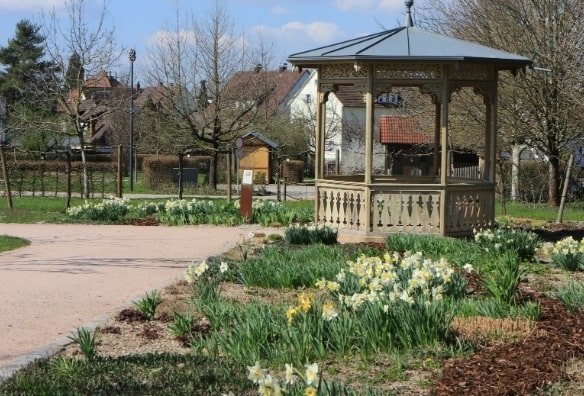Verger botanique Heilbronn